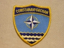 COMSTANNAVFORCHAN