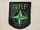 NATO Response Force